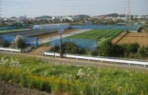 Farms alongside the JR Yokohama train line in Japan