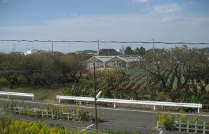 Fields, greenhouses and orchard alongside the JR Yokohama train line in Japan