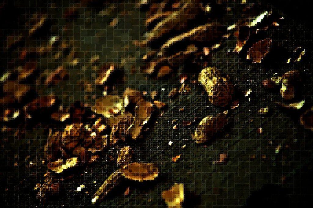 mosaic-based-on-peanut-shells-5854839418_ff85ce0da4_b-from-tyle_r