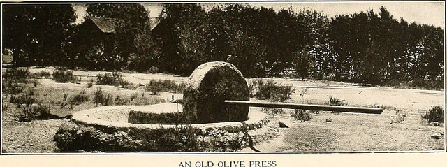 Old Olive Press from Internet Archive Book Images