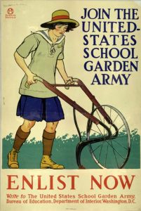 School Garden Army from USDA - 097474b653938b8418fc517bf711a239