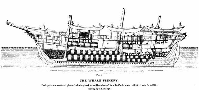 The Alice Knowles - Plate 189 - Section V, The Fisheries and Fishery Industries of the United States from Hathi Trust 640