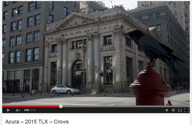 """Screen capture from Acura 2015 TLX """"Crows"""" car commercial"""