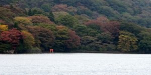 Gate and autumn trees at Lake Ashi in the Hakone region of Japan