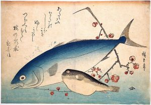 Hiroshige woodblock print - Fugu and Inada Fish, from the series Uozukushi DP123586