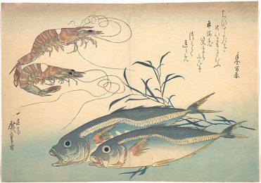 Aji Fish and Kuruma-ebi by Hiroshige from the Metropolitan Museum of Art