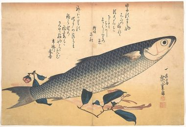 Bora Fish with Camellia by Hiroshige from the Metropolitan Museum of Art