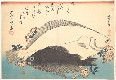 Hirame and Mebaru Fish with Cherry Blossoms by Hiroshige from the Metropolitan Museum of Art