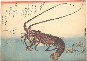 Ise-ebi and Shiba-ebi by Hiroshige from the Metropolitan Museum of Art