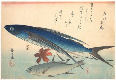 Tobiuo and Ishimochi fish by Hiroshige from the Metropolitan Museum of Art