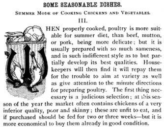 Decorative letter W from 1886 Good Housekeeping