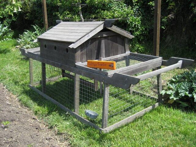 """""""Chicken tractor"""" at Berkeley's Edible Schoolyard"""