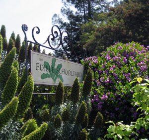 The Edible Schoolyard at MLK Middle School in Berkeley