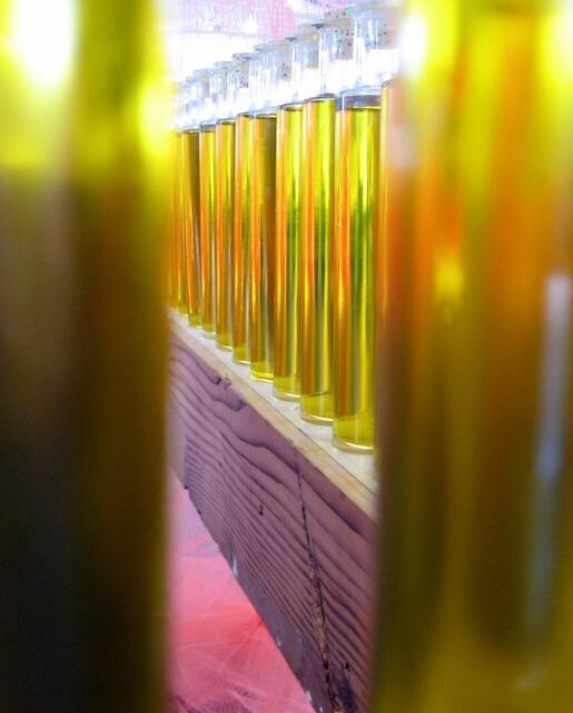 The olive oil pavilion at Slow Food Nation, San Francisco