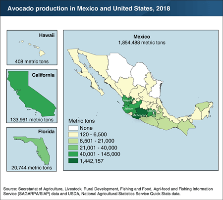 Map of avocado production Mexico and the United States, 2018