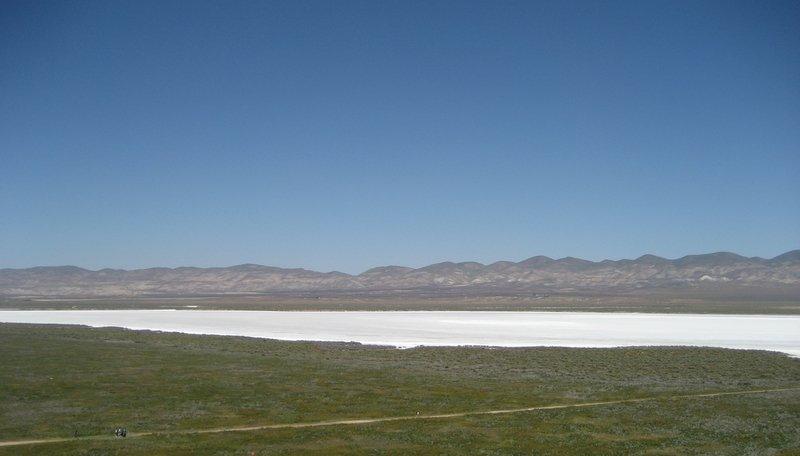 The soda lake at the Carrizo Plain National Monument